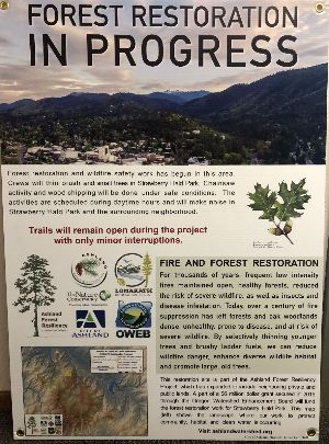 Forest Restoration Project