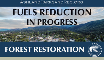 Fuels Reduction Project in Lithia Park