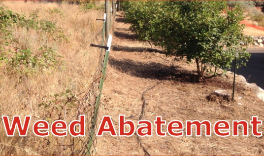 Weed Abatement