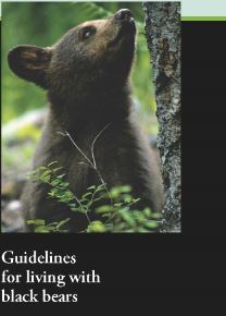 Living with Black Bear Brochure
