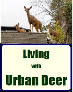 Living with Deer Brochure