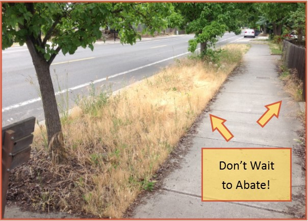 don't wait to abate sidewalk