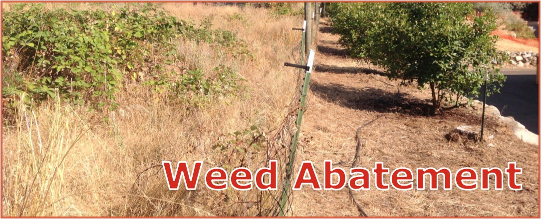 Weed Abatement title
