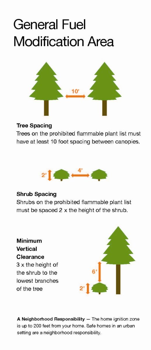 Tree and Shrub spacing