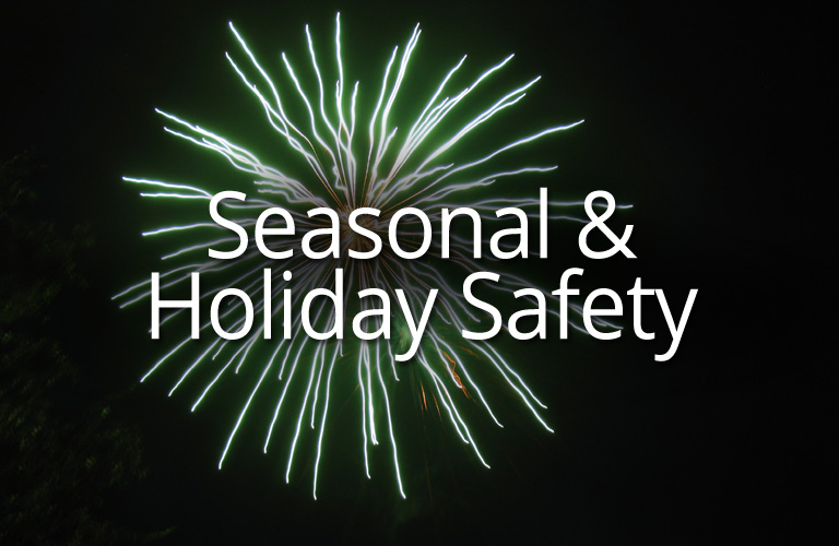 Seasonal & Holiday Safety