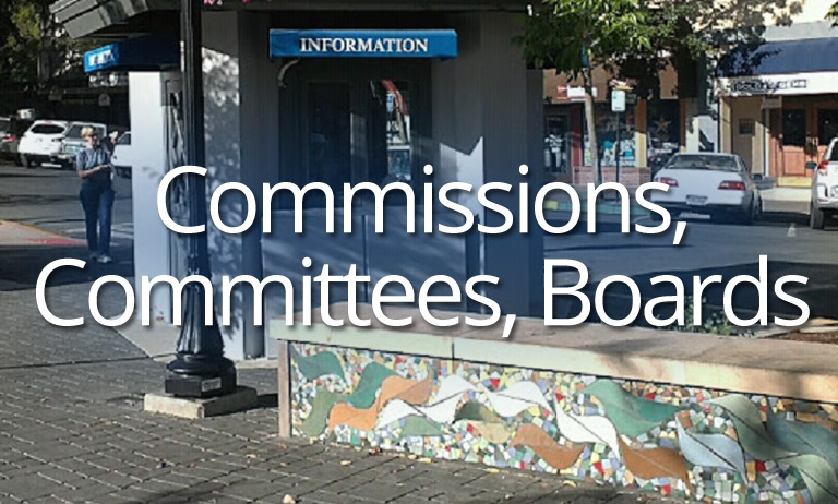 Commissions, Committees, Board