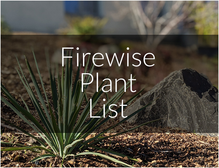 Firewise Friendly Plants
