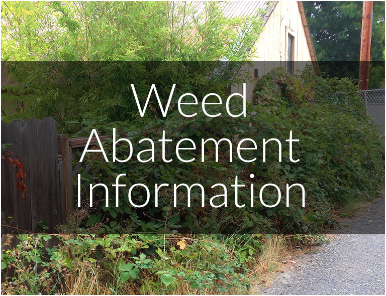 Weed Abatement Information