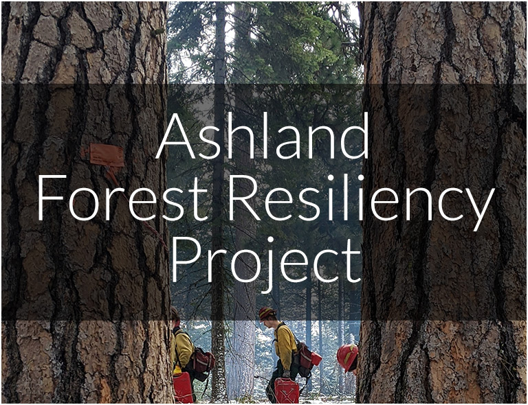 Ashland Forest Resiliency Project