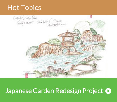 Hot Topic - Japanese Garden Desktop