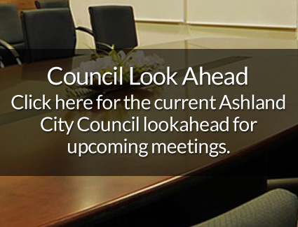 Council Look Ahead